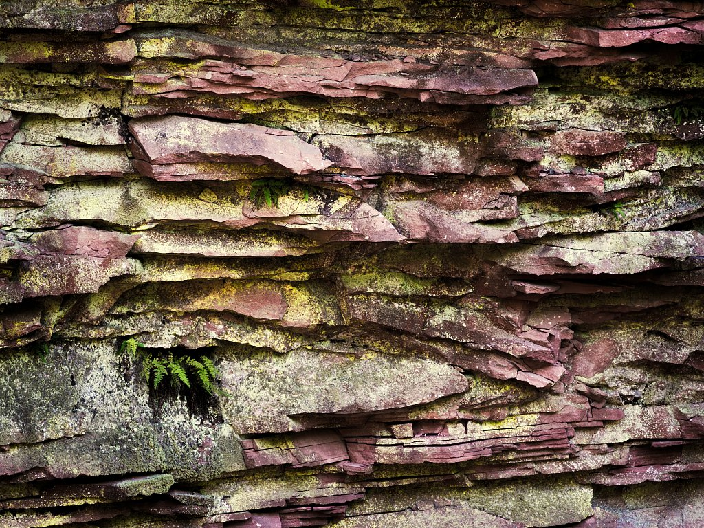 Rock Wall in Mauve