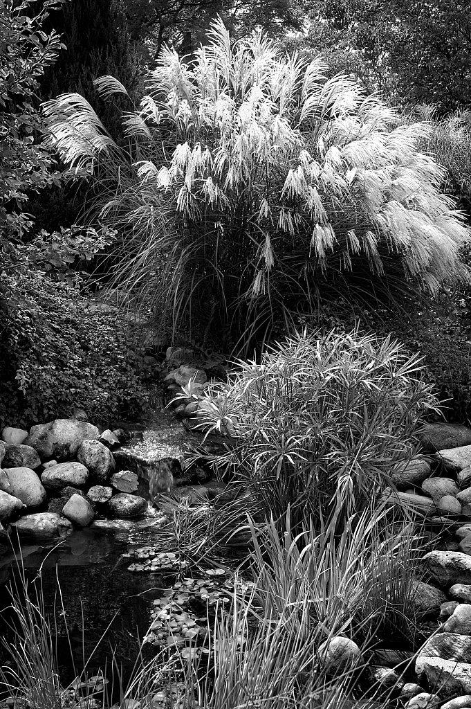Botanical Garden, Hamilton Ontario, Canada