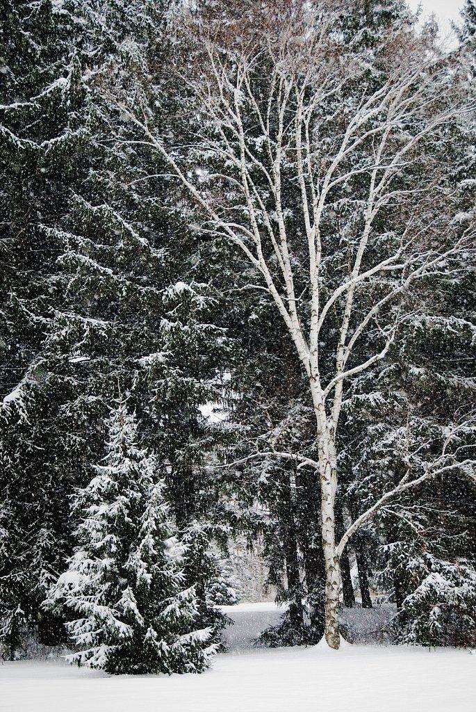 Whitnall Park, Franklin, Wisconsin