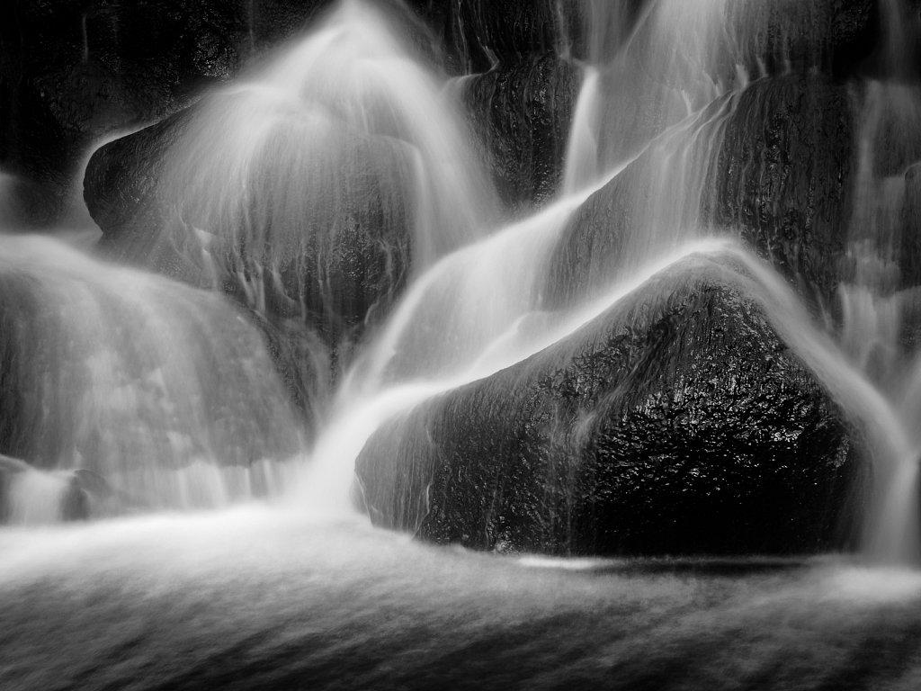 Whitnall Park Dam #4